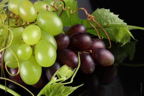 otslabvane s plodove grozde
